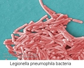 The Importance of a Dispersant in a Legionella Control Program