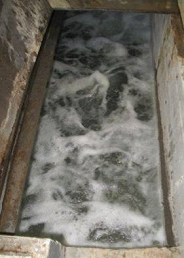 frothy_foam in a cooling tower sump