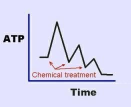 ATP graph1
