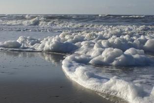 seashore_foam