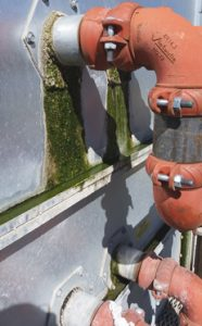 Algae growing on a water leak on the outside of a cooling tower.